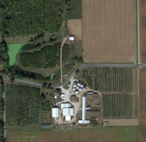 Orchard from Google Earth